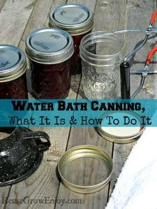 Water Bath Canning, What It Is And How To Do It