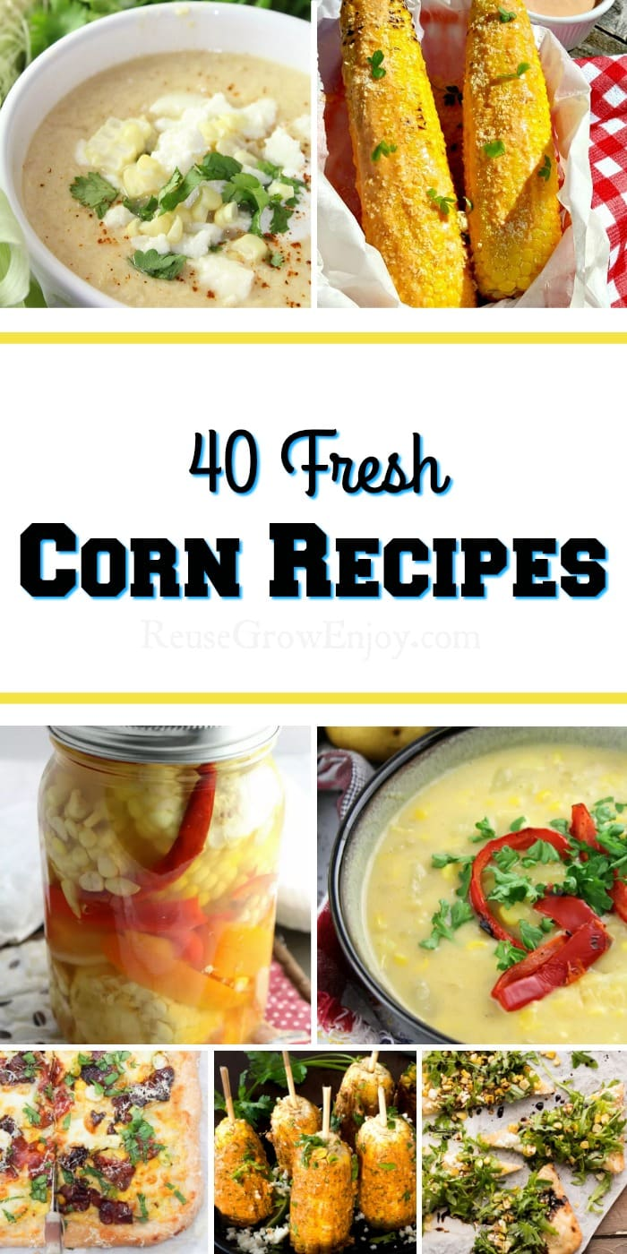 Grow your own corn? Or maybe you have been getting the fresh sweet summer gold from the farmers market? I rounded up 40 wonderful corn recipes to try!