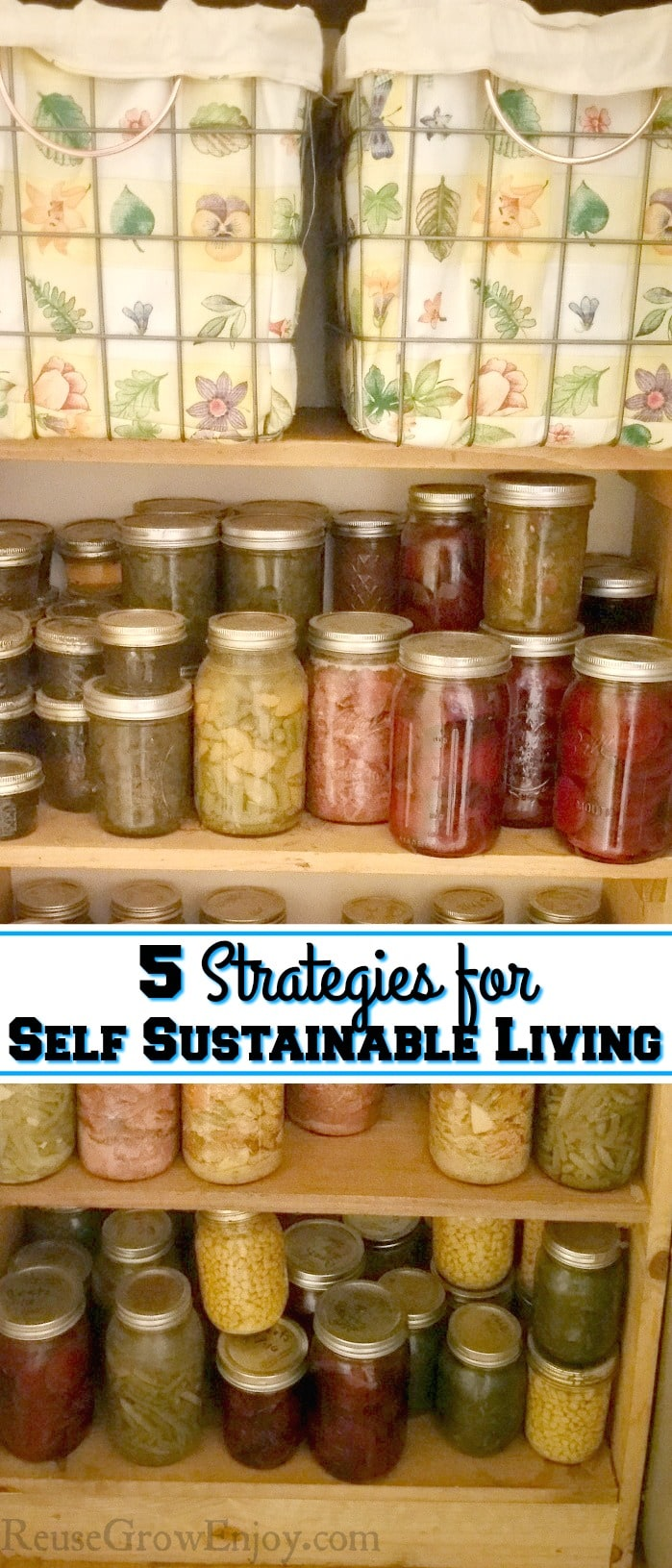 "Wood shelves filled with home canned foods with a text overlay that says ""5 Strategies For Self Sustainable Living""."