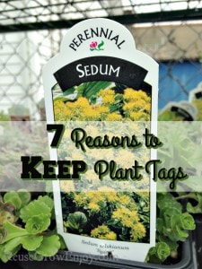 7 Reasons to Keep Plant Tags