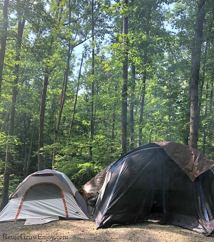 Two tents set up in front of woods
