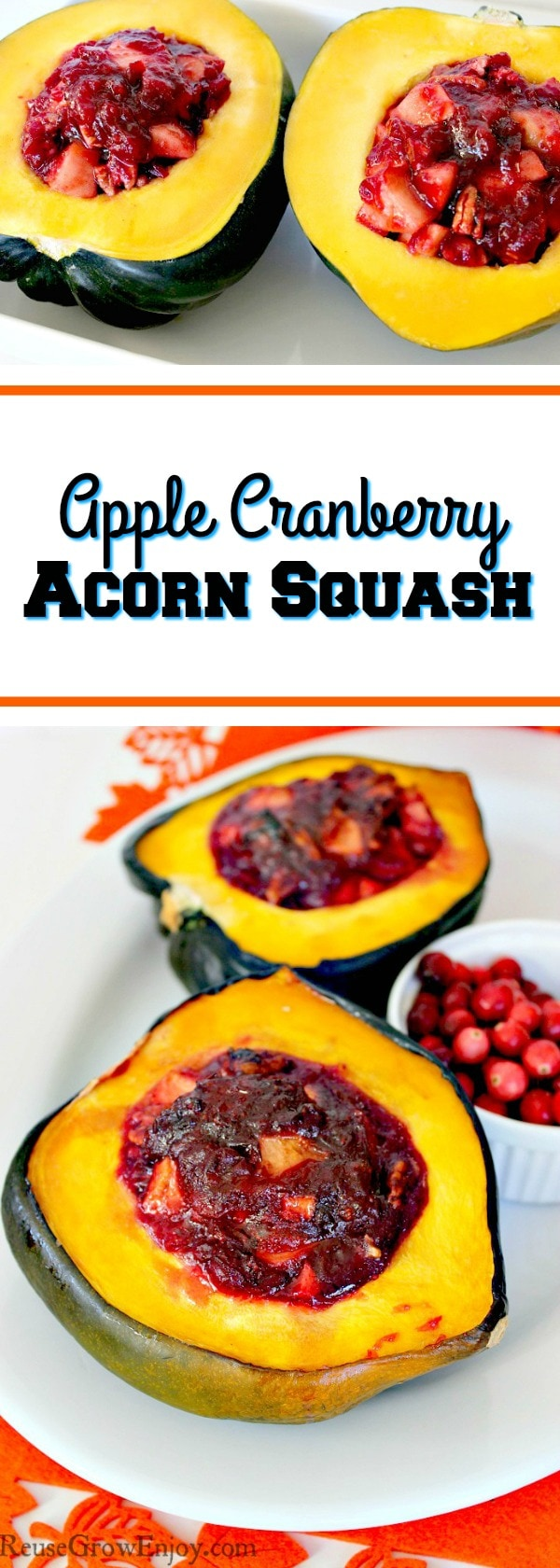 With fall comes all of the lovely flavors. Check out this Apple Cranberry Acorn Squash Recipe if you are up to trying something new.