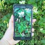 Ever been on a hike or even just a short walk and see a plant that you wonder what it is? You may want to check out these 7 apps to help you identify plants!