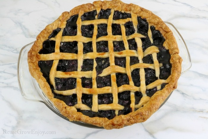 Blueberry pie fresh out of the oven