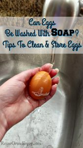Can Eggs Be Washed With Soap? Tips To Clean & Store Eggs