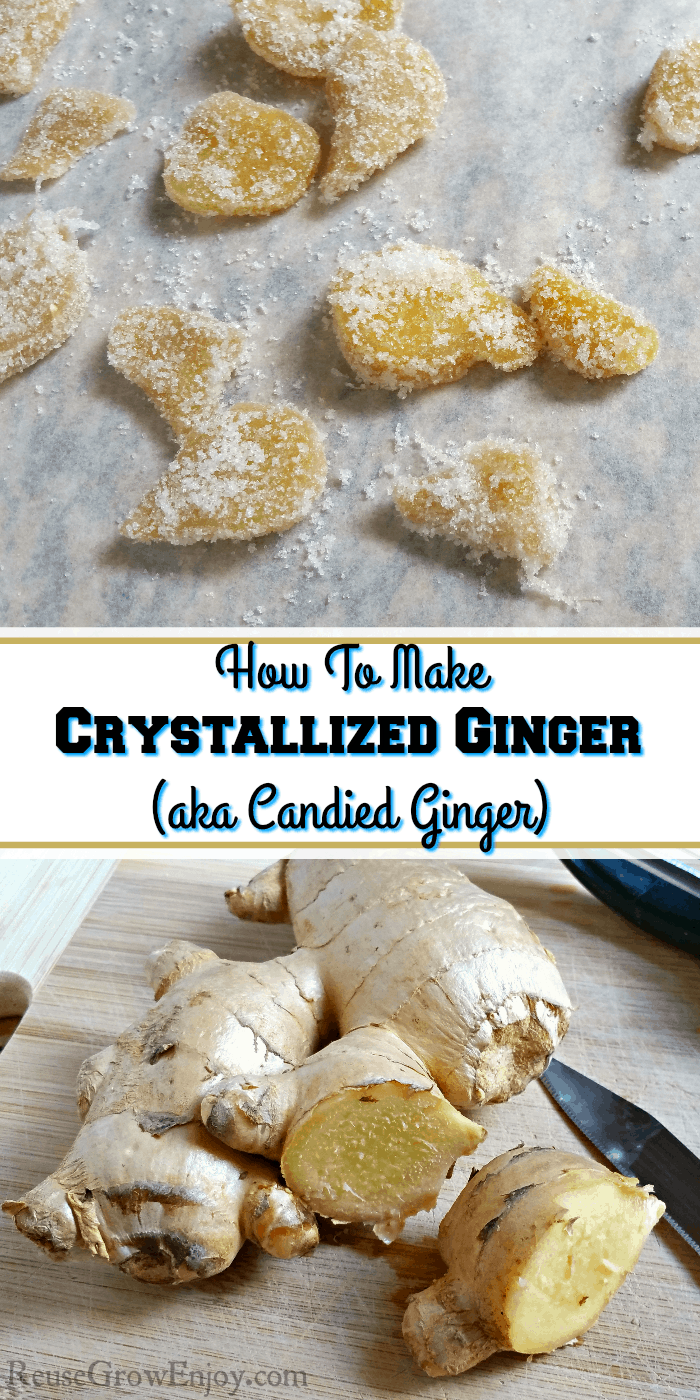 Candied ginger on the top and fresh ginger that the bottom. Text overlay in the middle