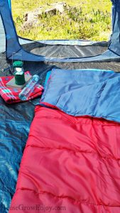 Red sleeping bag on a blue sleeping pad inside of a tent looking out at a stump and purple flowers. Camp light, book, blanket and bottle of water to the left.