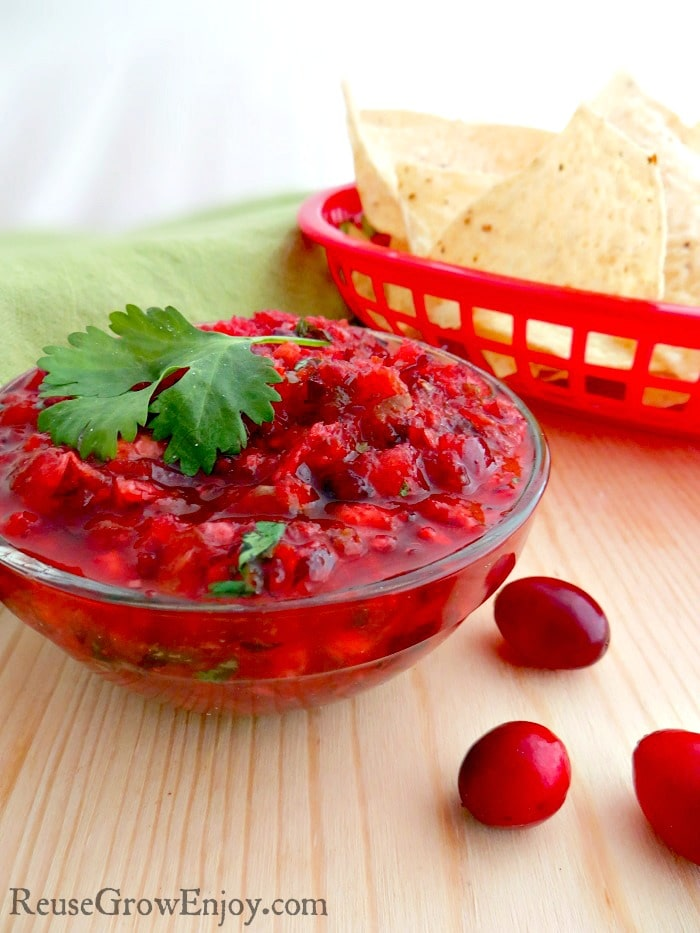 I have a wonderful new fall recipe for you to try. This cranberry salsa recipe is not only tasty, it is super easy to make too!