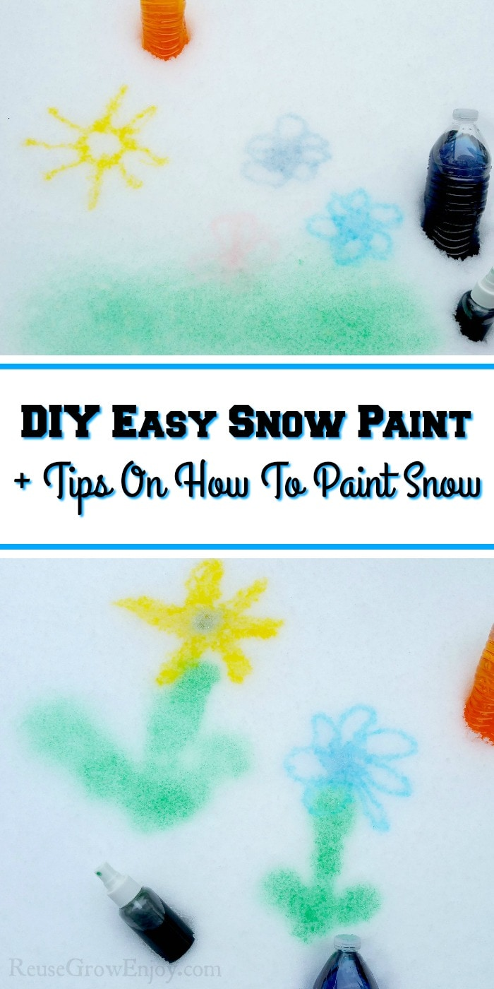 "Flowers and snow painted on snow with a text overlay that says ""DIY Easy Snow Paint & Tips On How To Paint Snow""."