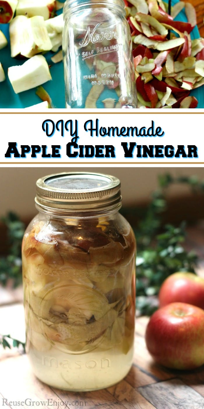 Apple cider vinegar is so handy to keep on hand. It has amazing benefits. Did you know that you can make DIY homemade apple cider vinegar super easy at home??