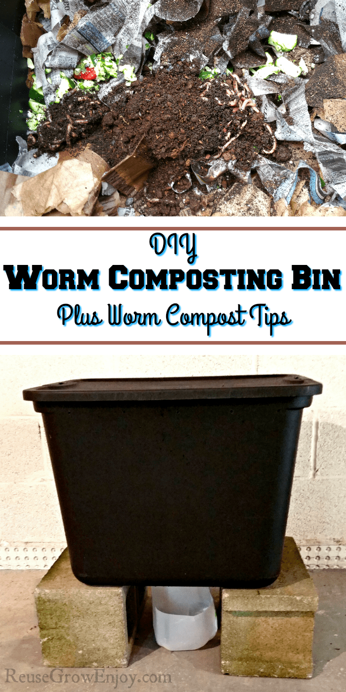 Worms in the compost at the top. Bottom is the made bin from a tote. In the middle there is a text overlay that says DIY Worm Composting Bin Plus Worm Compost Tips