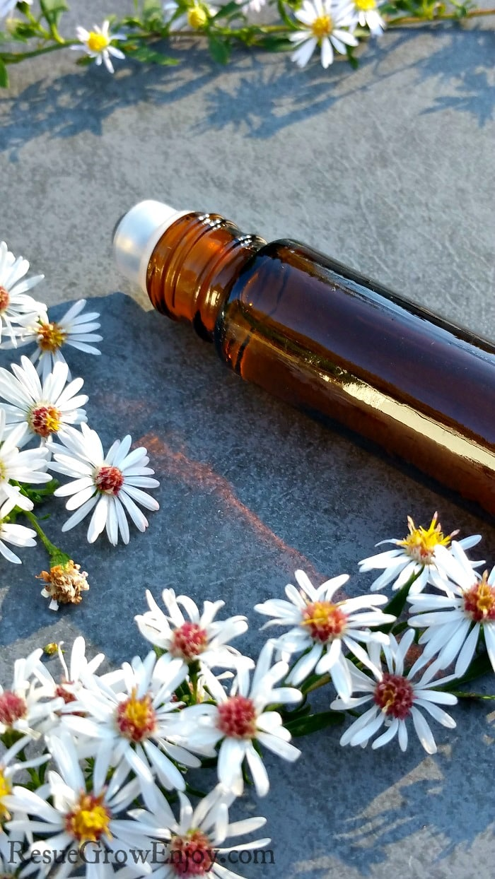 Brown essential oil roller bottle with lots of little white flowers around it.