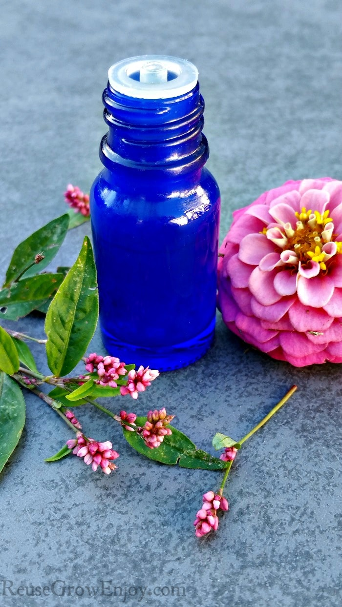 Small blue essential oil bottle on gray background with pink flowers around it.
