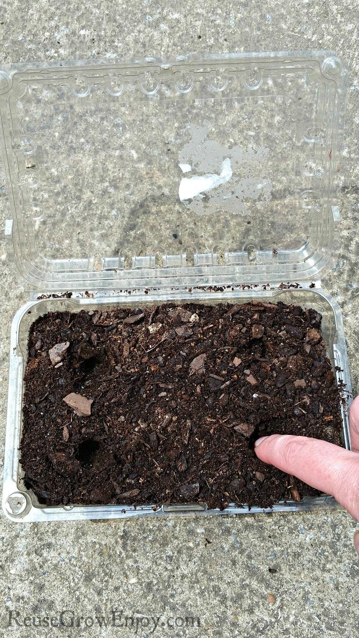 Finger making holes in dirt