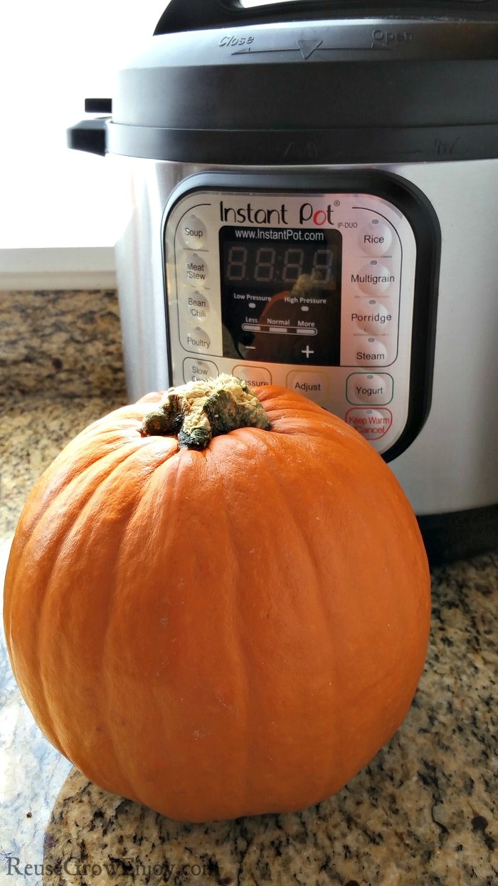 Small whole pumpkin on the counter in front of an Instant Pot getting ready to make pumpkin puree