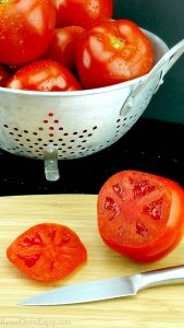 Have tons of fresh garden tomatoes? I am going to share with you over 80 amazing garden fresh tomato recipes as well as some tomato facts and growing tips!