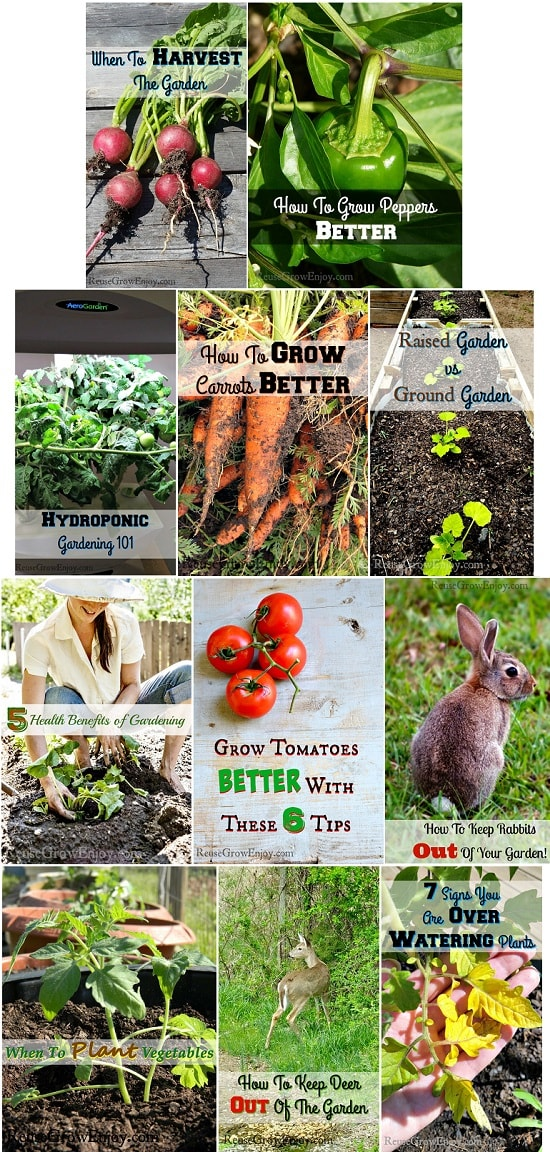 Gardening Gifts Ideas Gardening gifts garden gift ideas that every gardener would love garden gift ideas that every gardener would love workwithnaturefo