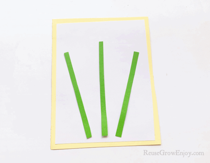 Green strips on white and yellow paper