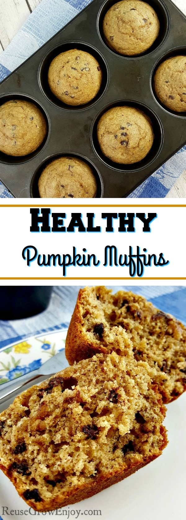 Love the taste of pumpkin but are trying to eat healthy? Check out this yummy recipe for healthy pumpkin muffins!