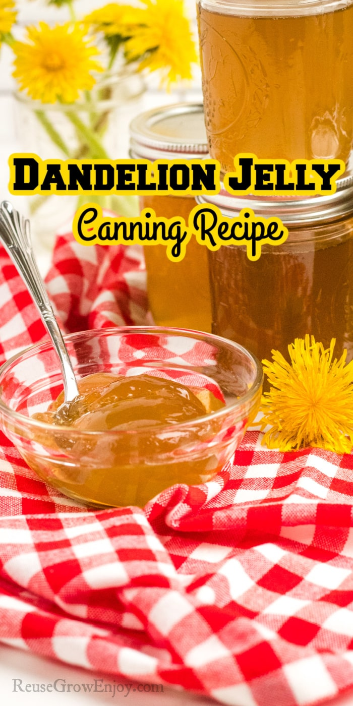 Jars of Dandelion Jelly stacked in background small glass dish of it on a red checkered cloth in the front. Text overlay at top