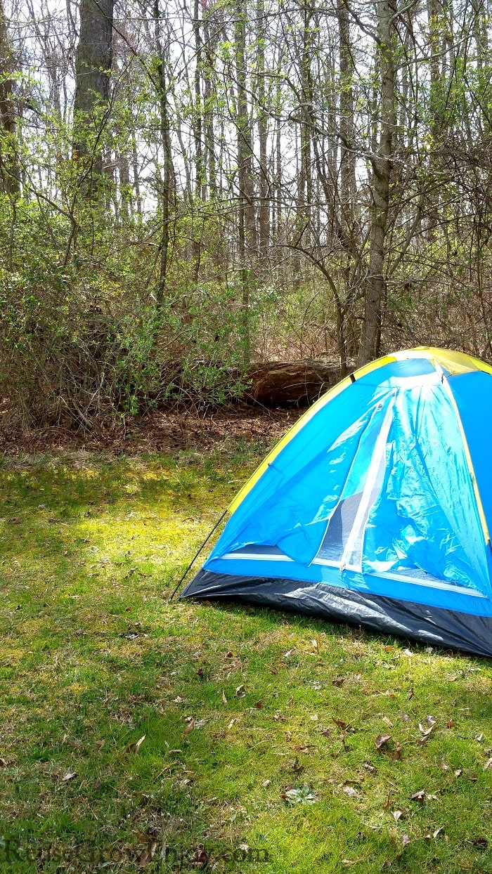 Small light blue tent with yellow trim setting on grass with woods in background.