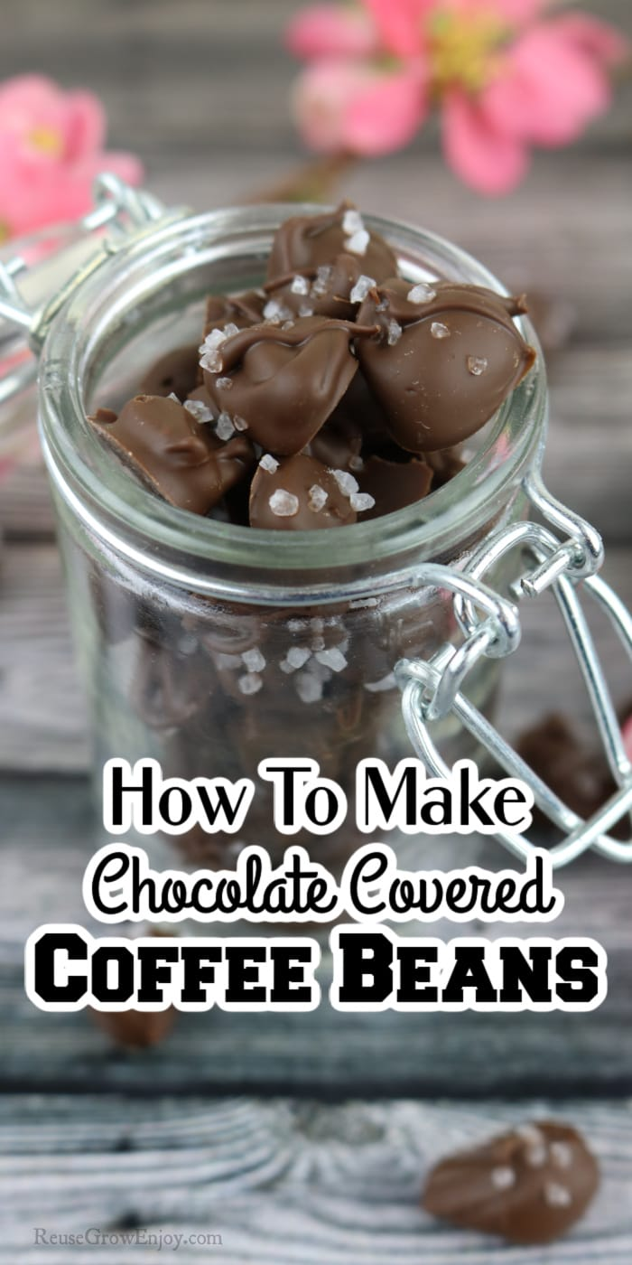 Glass jar filled with chocolate covered coffee beans with pink flowers in background. Text overlay at the bottom that says How To Make Chocolate Covered Coffee Beans