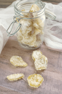 Jar full of crystallized ginger.
