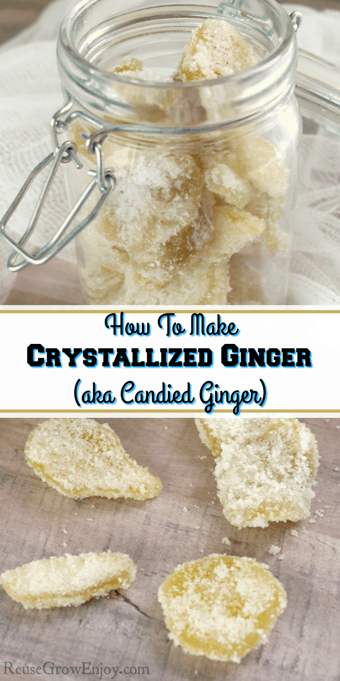 Jar full of crystallized ginger. Text overlay in the middle.