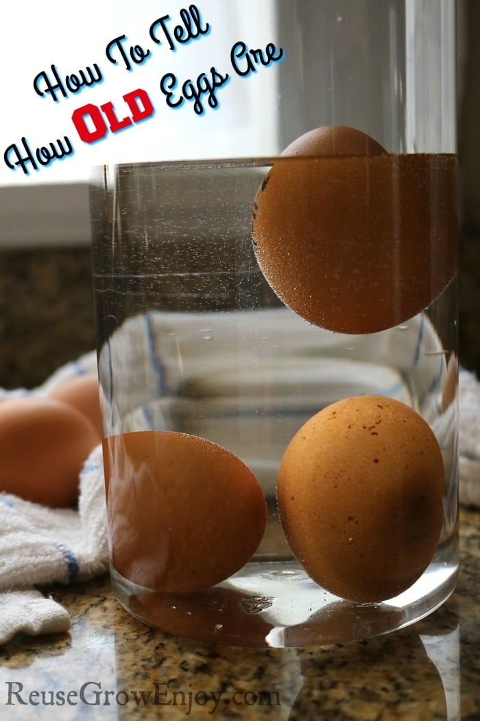 How To Tell How Old Eggs Are. Have you ever wondered how old eggs are that are in your fridge? Or maybe you just bought some and now wondering how fresh they really are? Check out this post to find out how to tell. It is super easy to do too.