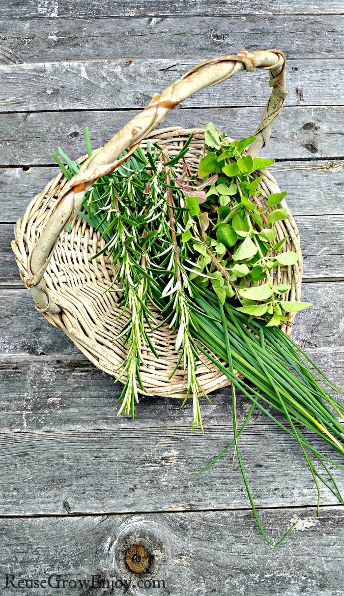 A flat basket with fresh cut herbs in it sitting on natural wood boards.