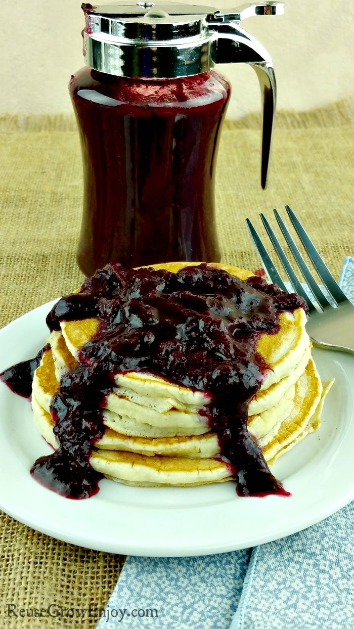 Have a ton of blueberries you need to use up? Check out this recipe for Instant Pot homemade blueberry syrup/sauce. Easy to make and oh so good! Plus it is Paleo and no refind sugar added.