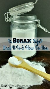 Is Borax Safe? What It Is And How To Use