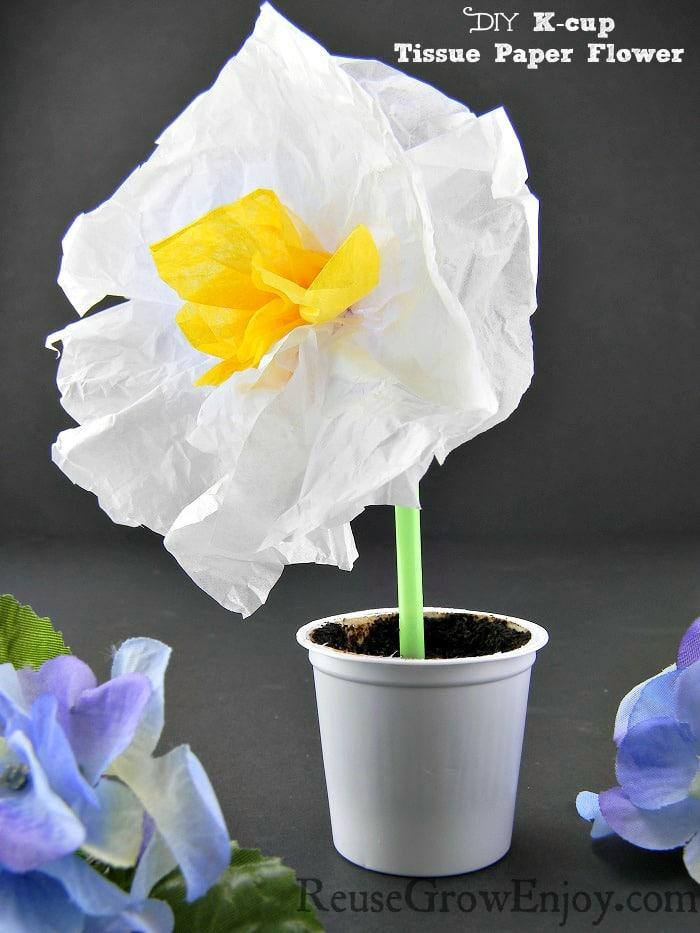 K-cup Tissue Paper Flower
