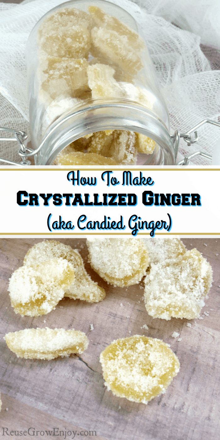 Jar on its side with crystallized ginger falling out. Text overlay in the middle.