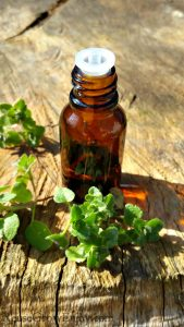 Marjoram Essential Oil – What It Is & Ways To Use It