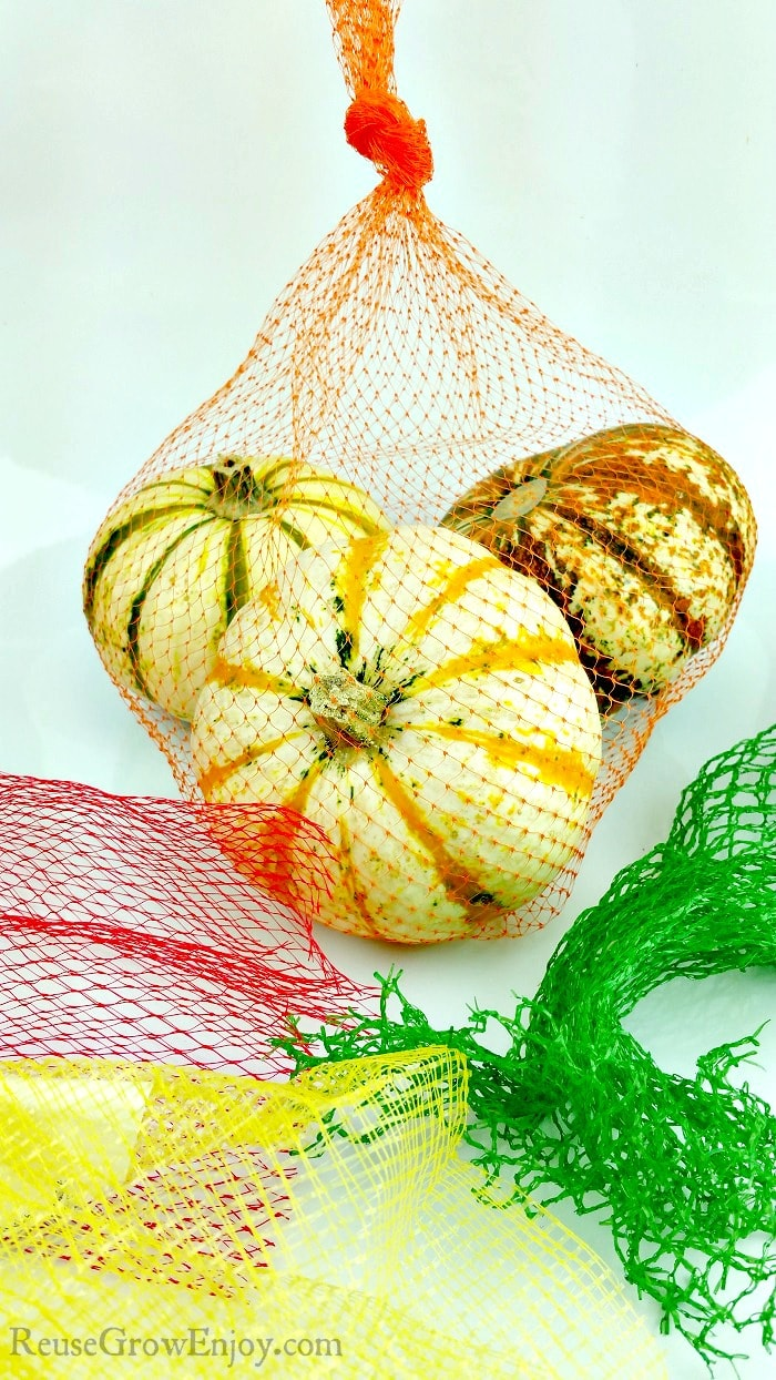Orange mesh produce bag with 3 fall squash in back with red, yellow & green mesh bags in front.