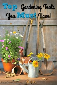 Top Gardening Tools You Must Have