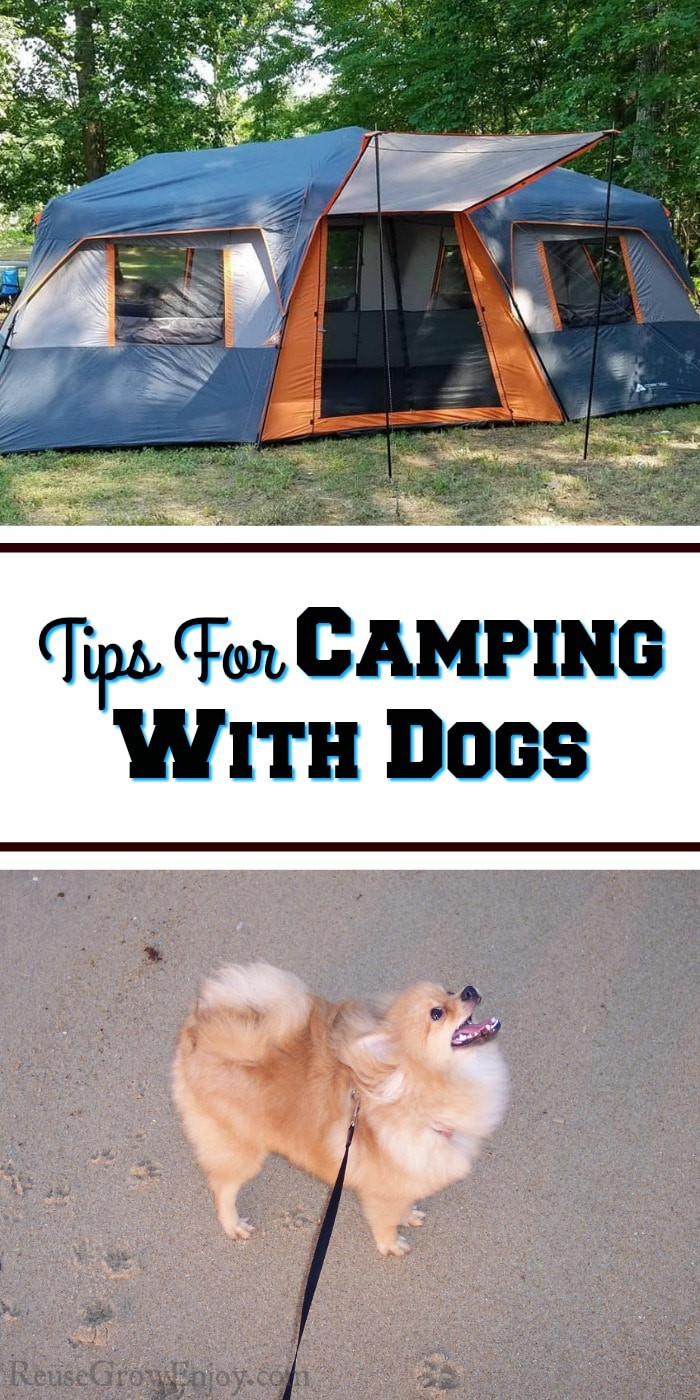 "Top is a large family tent and the bottom there is a small fluffy dog standing on sand. In the middle there is a text overlay that says ""Tips for camping with dogs""."