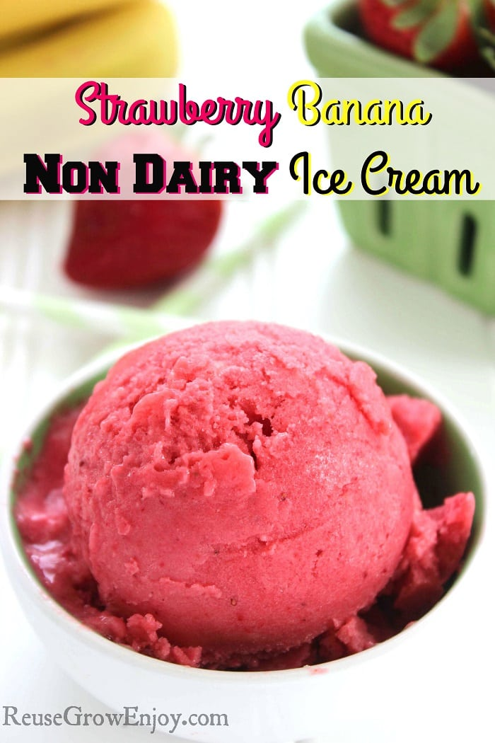 Non Dairy Ice Cream Strawberry Banana Flavor
