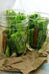 How to Pickle Cactus Nopales