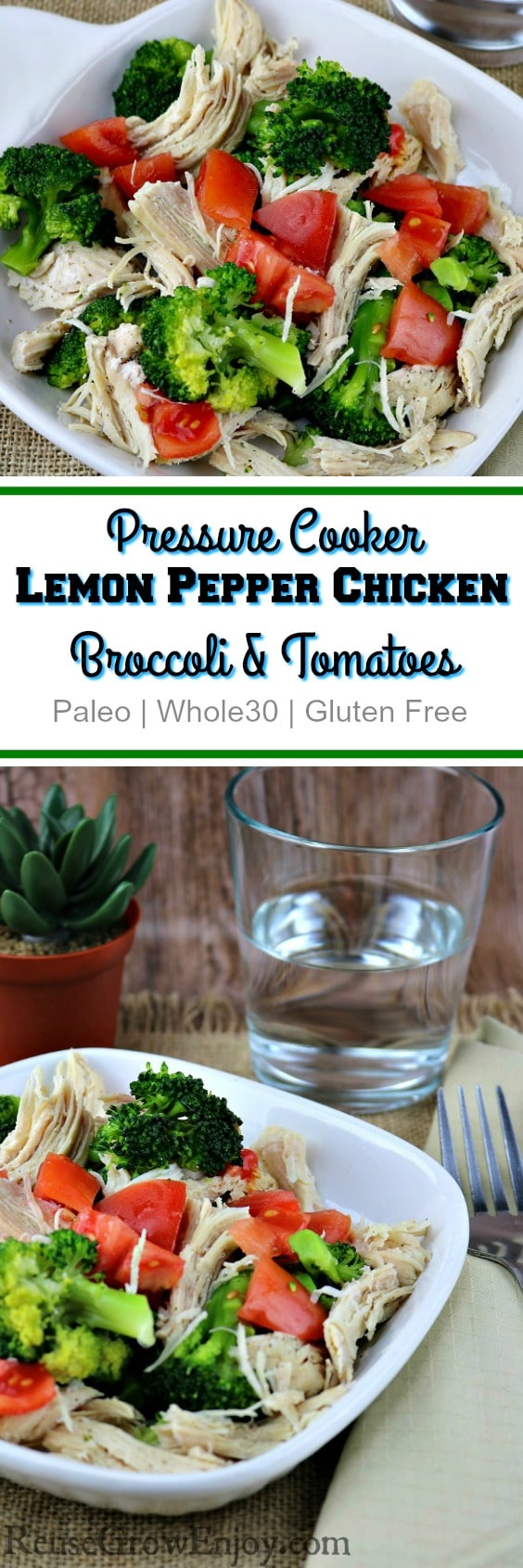 I have a pretty great pressure cooker recipe for you to try. It is for lemon pepper chicken with broccoli and tomatoes. It is both Paleo and Whole30!