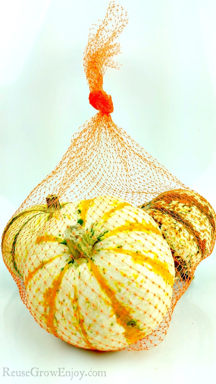White background with orange mesh produce bags with fall squash