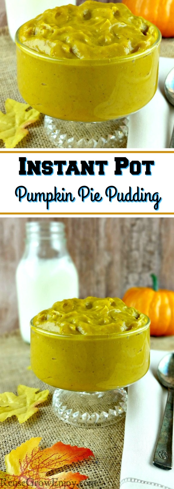 If you are crazy over pumpkin, I have a Instant Pot pudding for you to try. It is a recipe for homemade pumpkin pie pudding!