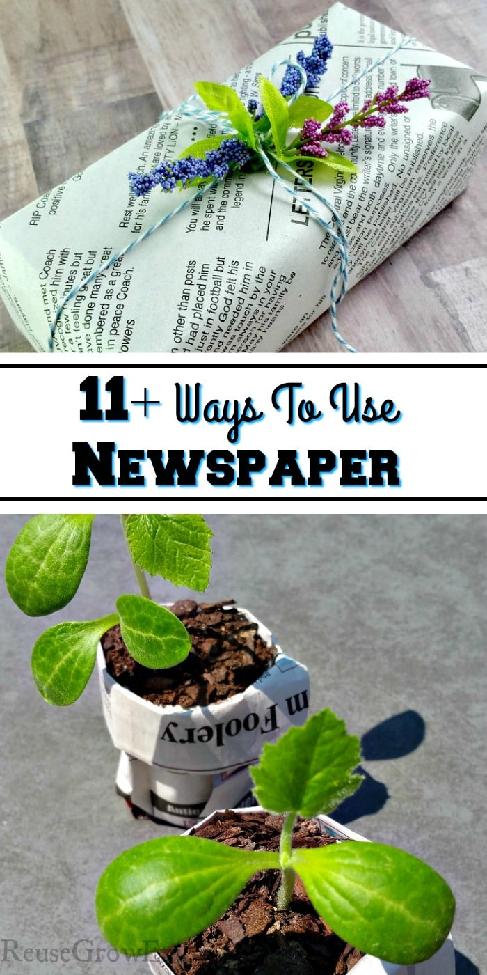 To of pic is a gift wrapped in newspaper and the bottom half is plants growing in newspaper pots. In the middle there is a text overlay that says 11+ Ways To Use Newspaper.