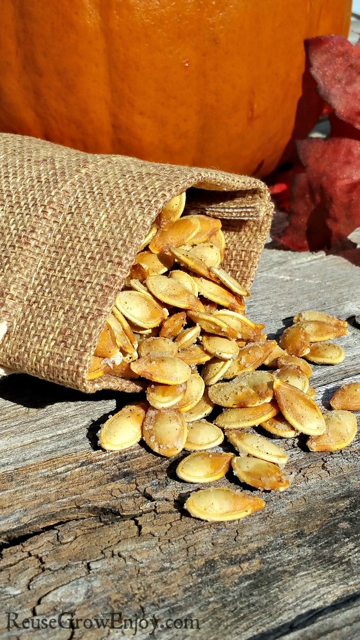 Small burlap bag laying down with roasted pumpkin seeds spilling out.