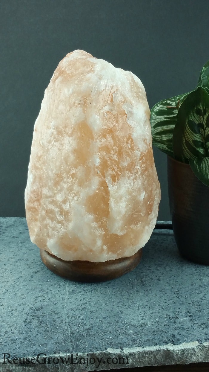 Salt Rock Lamp