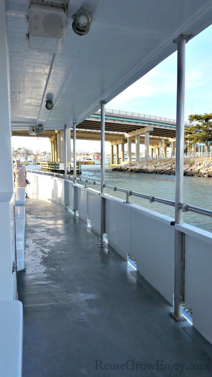 Front outer side deck of the Rudee Flipper.