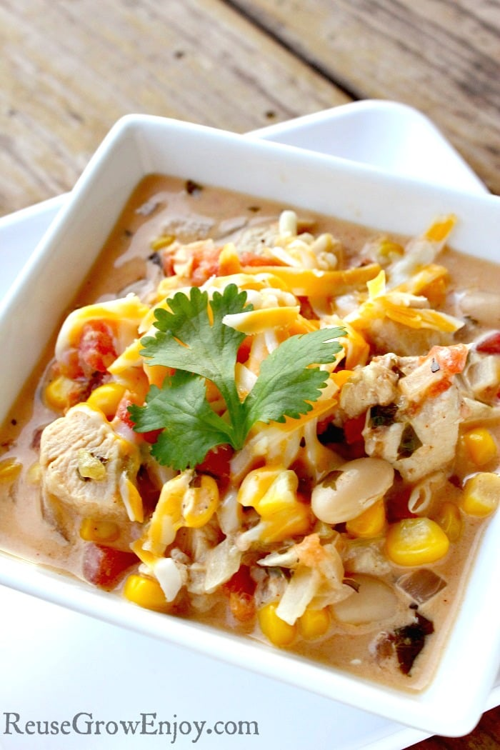Do you ever get sick of eating the same old soups? If you are looking for something different for your taste buds, I have a recipe you have to try. It is a recipe for Southwest Chicken Soup.