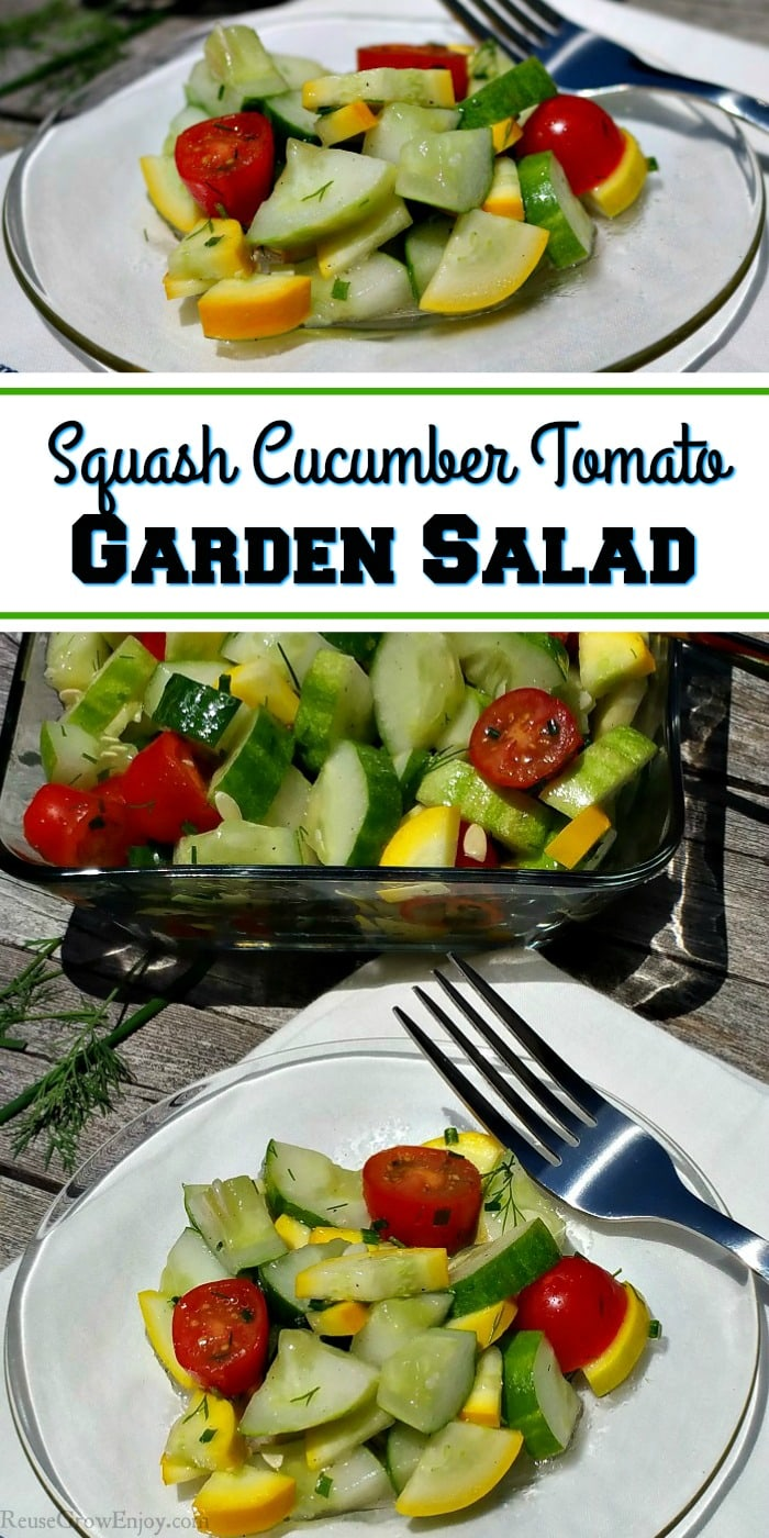 ave some garden fresh produce and looking for a new recipe to try? Check out my recipe for a squash cucumber tomato garden salad. Healthy, easy and tasty!