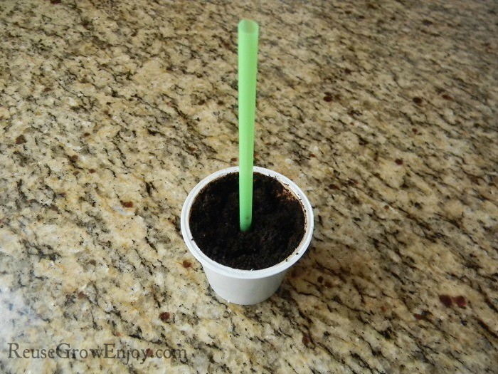 Straw In Cup